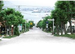 超大影楼背景图片-汉城路