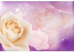 白色玫瑰移门图案矢量素材