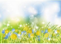 鲜花草地背景