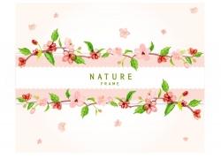 花卉植物背景