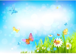 蝴蝶鲜花草地与梦幻光斑