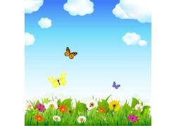 蓝天白云鲜花草地蝴蝶