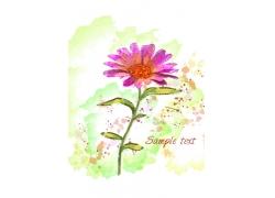 花卉水彩画背景