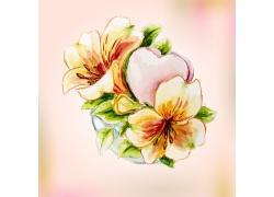 手绘盛开的花朵