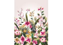 花朵植物背景