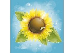 星光与向日葵花