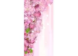 梦幻的粉色鲜花