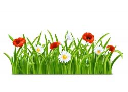 鲜花草地设计