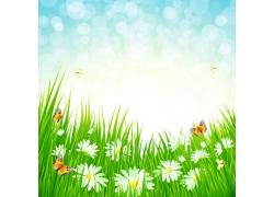 花朵草地背景