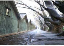 影楼背景图片-雨后街