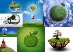 8张绿色世界高清图片