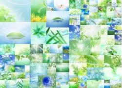 水与绿色植物高清图片