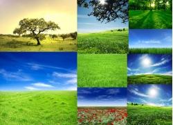 9张高清草地主题风景图片素材