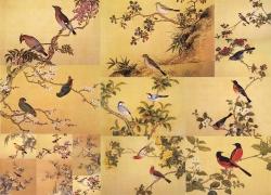 17张花鸟图素材