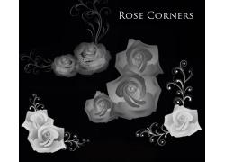 玫瑰花photoshop笔刷