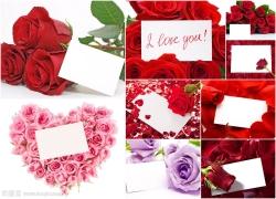 玫瑰花与卡片高清图片(9p)