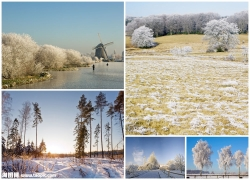 冬季雪景图片素材(5p)