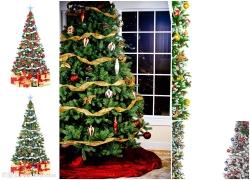 圣诞树高清图片(6p)