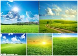绿色草地图片素材(5p)