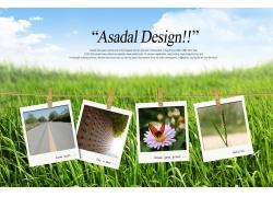 草地 照片模版PSD素材