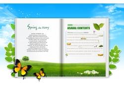 蝴蝶 打开的书PSD素材