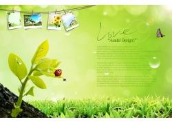 草地照片模版PSD素材