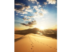 阳光下的沙漠风景图片