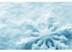 冬季雪花近景图片