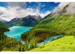 天山森林河流风景图片