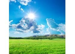阳光草地风景图片