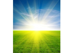 蓝天草地阳光风景图片