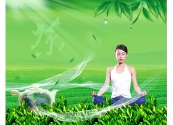 茶叶宣传海报设计PSD素材