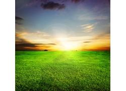 茫茫草地风景图片