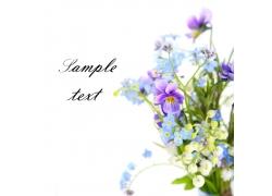 花束插花高清图片