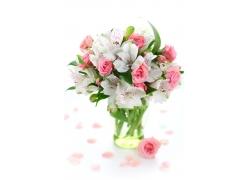 花朵插花图片