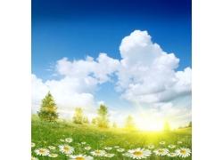 草地上的蓝天图片