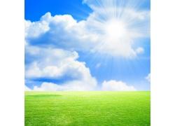 阳光照耀的绿色大地图片