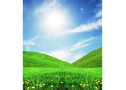 阳光照耀的绿色山谷图片