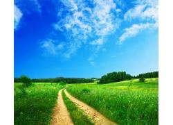 绿草地里的小路梦幻风景图片
