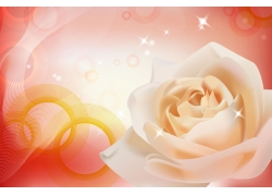 白色玫瑰移门图案