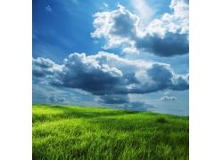 蓝天白云下的草地风景图片