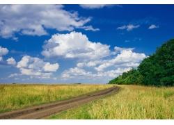绿色原野上的公路自然风景图片