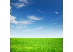 原野上的春色风景图片