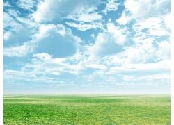 蓝天绿地春意盎然风景图片