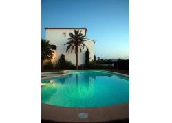 海滨别墅 游泳池 椰子树图片