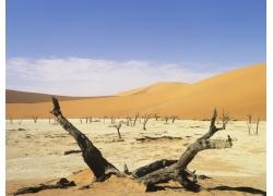 大沙漠风光摄影高清图片
