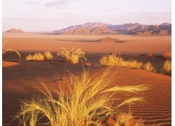 沙漠风光美景高清图片