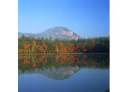 平静水面中山林的倒影图片