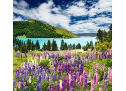 蓝天白云下的山水风景图片