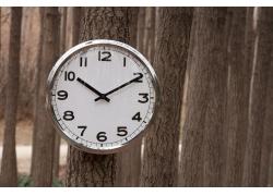 树上的时钟环保宣传高清图片